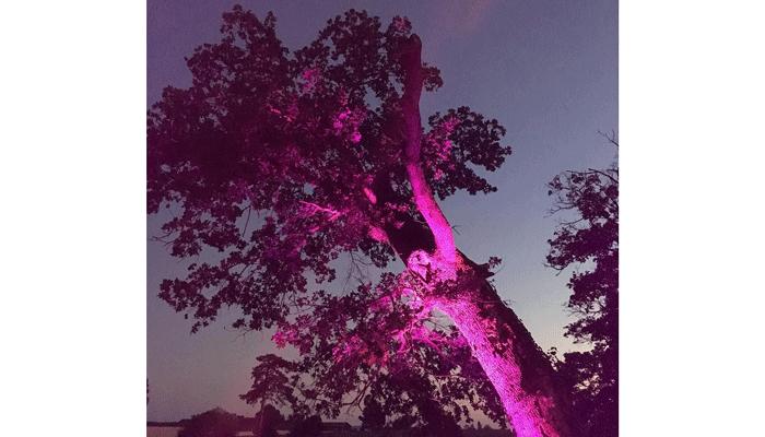 Eclairage extérieur projecteur led Votre Partenaire Festif